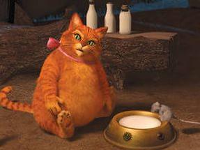 толстый кот из мультфильма