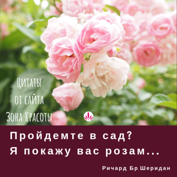 Женский юмор и цитаты великих людей от сайта Зона Красоты
