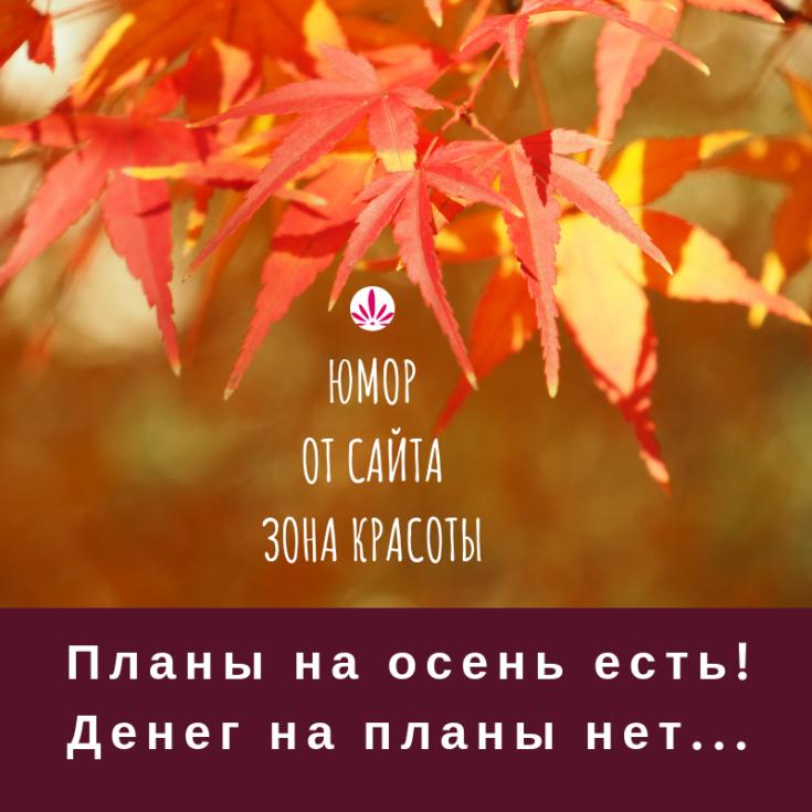 Картинки, юмор, мотивация и осень — все в одной статье на сайте Зона Красоты